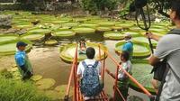 Taïwan : une balade dans un parc pour s'asseoir sur des nénuphars