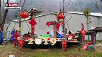 Des bébés pandas prêts à célébrer le Nouvel An chinois