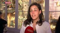 Bordeaux  : réouverture du Museum de sciences et nature