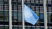 Toute délégation nationale de l'ONU peut accéder librement à la bibliothèque.