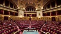 Le Sénat français le 17 novembre 2016 à Paris [LIONEL BONAVENTURE / AFP/Archives]