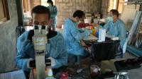 Les chercheurs traquent les virus qui pourraient contaminer le monde entier