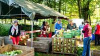 Des consommateurs locaux, des propriétaires et des dirigeants de la première ferme collective des Pays-Bas viennent récupérer leur part de la récolte, le 13 octobre 2018 à Boxtel, dans le sud des Pays-Bas [Ivar pel / Herenboeren Nederland Foundation/AFP/Archives]