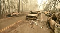 Des véhicules calcinés parsèment les routes de Paradise, petite ville traversée par l'incendie le plus meurtrier de l'histoire de la Californie [Josh Edelson / AFP]
