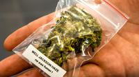 La consommation et la culture du cannabis deviendront légales au Canada le 17 octobre [PHILIPPE HUGUEN / AFP/Archives]