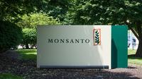 """Le groupe américain Monsanto aurait secrètement fiché """"des centaines de personnalités"""" en France en fonction de leur position sur le glyphosate [Michael B. Thomas / AFP/Archives]"""