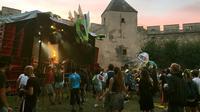 Des participants au festival de musique électro Château Perché, le 5 août 2017 à Ainay-le-Vieil, dans le Cher [Karine ALBERTAZZI / AFP]
