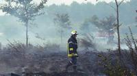 Les pompiers sont intervenus immédiatement. (photo d'illustration)
