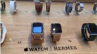 Les modèles Hermès sont présentés dans certains Apple Store en France.