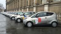 Trente Bluecar aux couleurs des pays représentés ont emmené les élus.