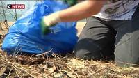 Journée mondiale sans sac plastique : un fléau pour l'environnement