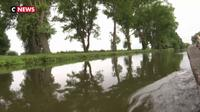 À la découverte des marais de l'Audomarois