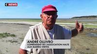 Le combat d'un homme contre les algues toxiques