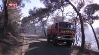 Un feu de forêt à Saint-Mandrier rapidement maîtrisé