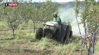 Rhône : les agriculteurs inquiets après la perte d'une partie de leurs récoltes