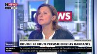Roxana Maracineanu sur l'incendie de l'usine Lubrizol à Rouen : «Toute la transparence sera faite»