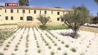 Fos-sur-Mer : une ancienne bergerie rénovée en maison des arts