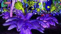 Un festival de lumières au zoo de Thoiry