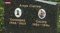 Un cimetière pour rendre hommage aux animaux