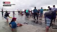 Les plages du Brésil touchées par une pollution aux hydrocarbures
