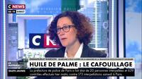 Emmanuelle Wargon : «La France s'est engagée à lutter contre la déforestation importée»