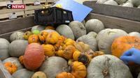 Une entreprise qui lutte contre le gaspillage alimentaire