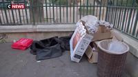 Crise sanitaire : les rats envahissent Paris