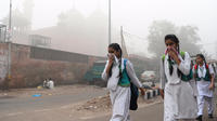 Les autorités locales ont acté ce mercredi la fermeture des établissements scolaires à New Delhi : cinq millions d écoliers resteront donc chez eux jusqu à dimanche, au moins.