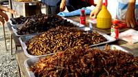 Un marché aux insectes en Thaïlande