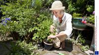 Sondage - les Français et le jardinage