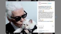 Karl Lagerfeld et sa «muse», Choupette.