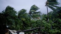 L'ouragan Maria a frappé mardi 19 septembre 2017 la Guadeloupe.
