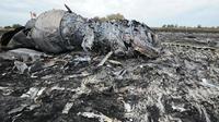 Le site du crash du vol MH17 le jour de la catastrophe, le 17 juillet 2014.
