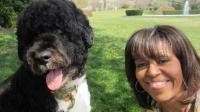 """Michelle Obama, première dame des Etats-Unis et Bo, le chien présidentiel se font un """"selfie"""", un autoportrait pris à partir d'un téléphone portable / illustration"""