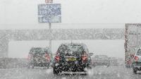 Sur Twitter, les internautes ont posté les premières photos et vidéos de la neige tombant sur l'Île-de-France et recouvrant peu à peu les routes.