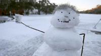L'université de Vancouver a également annulé tous les cours, car près de 25 centimètres de neige sont tombés dans la région.