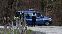 La piste Lelandais est examinée dans une «quarantaine» d'affaires non-résolues, a annoncé la gendarmerie.