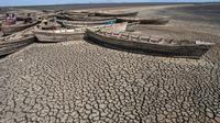L'organisation mondiale de protection de la nature WWF prévoit que 410 millions de personnes seront frappées par la sécheresse d'ici à 2100, entraînant des flux incontrôlables de réfugiés climatiques.