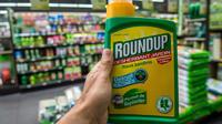 Le Roundup est l'un des herbicides les plus utilisés au monde. Et aussi l'un des plus controversés.