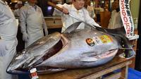 Le poisson a été découpé avant midi pour être transformé en sushis.