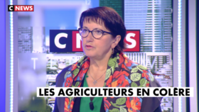 L'interview de Christiane Lambert