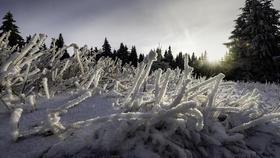 Vague de froid : 24 départements placés en vigilance orange neige