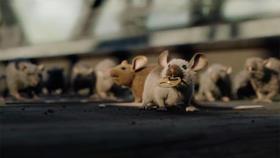 «Mice, a small story», le court-métrage impressionnant des étudiants d'Isart Digital