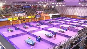 Les deux Corées réunies le temps d'un tournoi de ping-pong