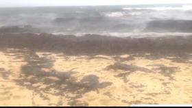 Collision au large de la Corse : des boulettes d'hydrocarbures sur les plages varoises