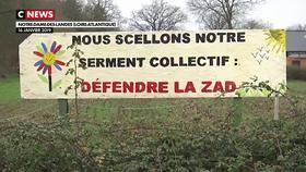 Notre-Dame-des-Landes : bilan, un an après l'abandon du projet