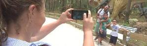 Dinosaures en balade Dino Park de Lourinhã