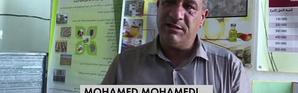 L'huile de figue de barbarie : un business qui fonctionne en Algérie