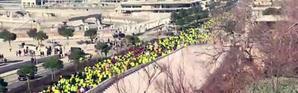 Gilets jaunes : des manifestations dans toute la France