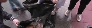 Sartrouville : les jeunes se mettent au défi de nettoyer leur cité